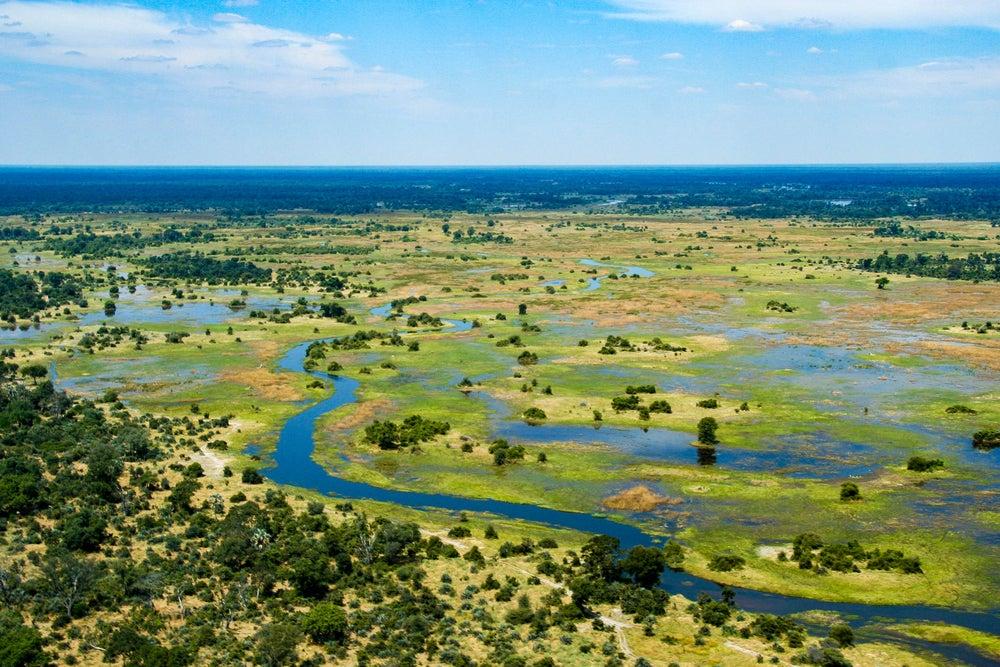 Botsuana: naturaleza salvaje en el delta del Okavango