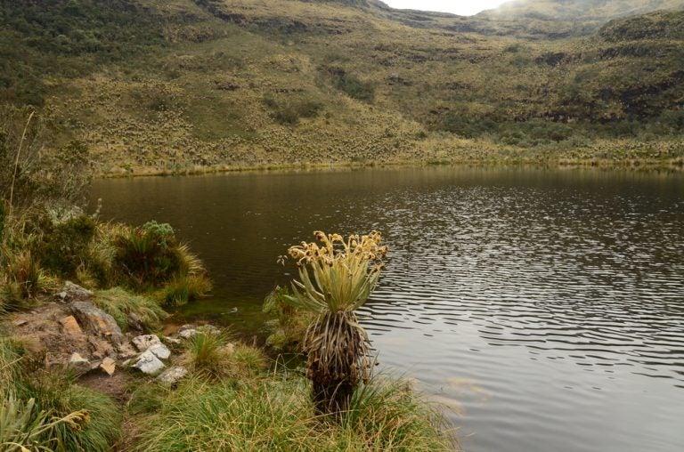 Los mitos de la laguna de Iguaque y la diosa Bachué