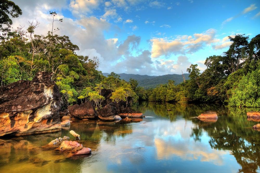 Parque Nacional Masoala en Madagascar