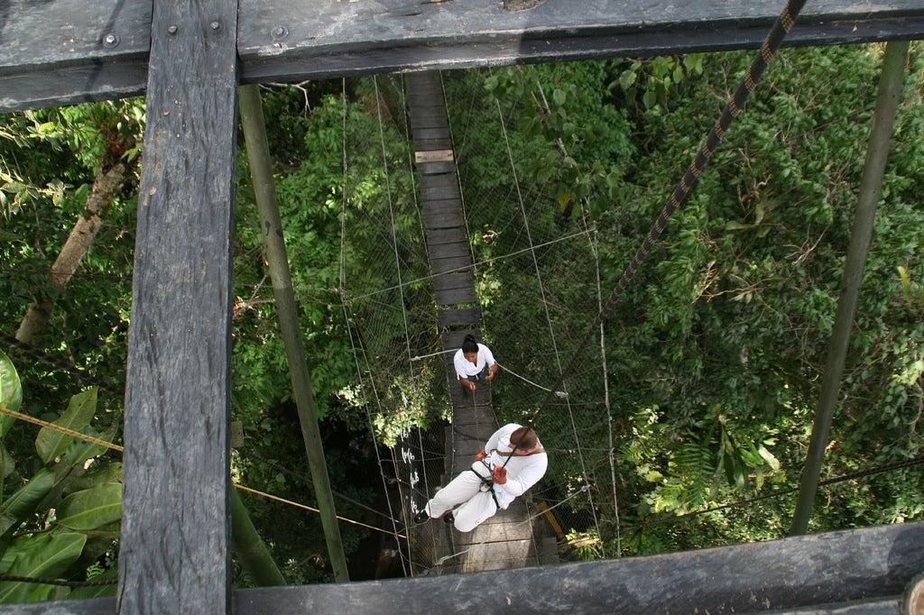 Ruta ene l Parque Nacional Natural Amcayacu