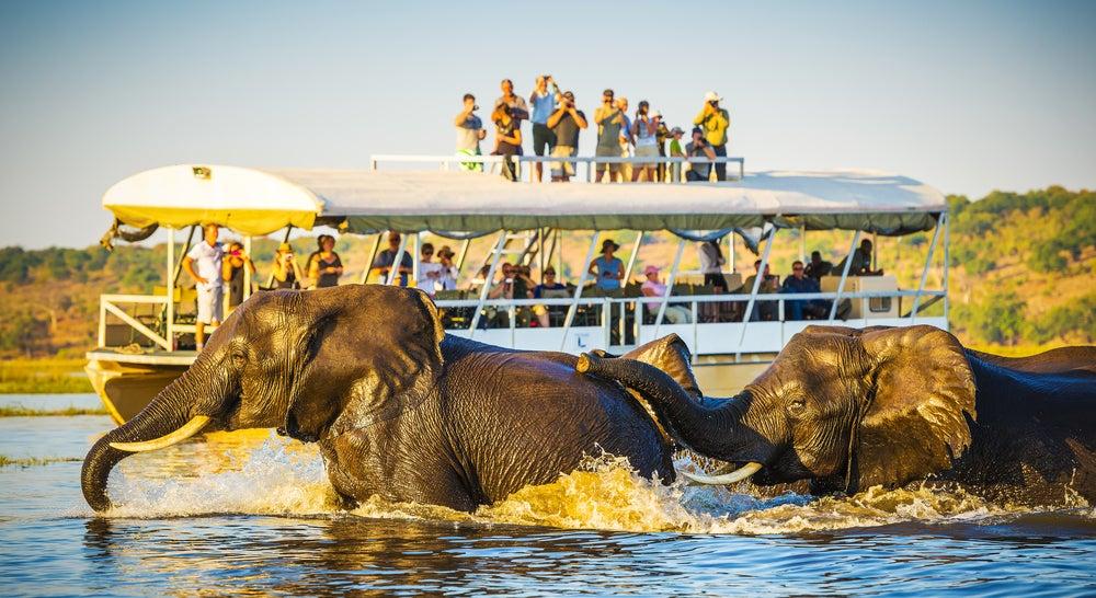 Safari fotográfico en Botsuana