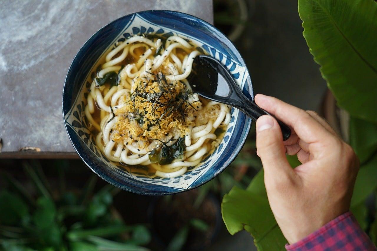 Udon, plato japonés