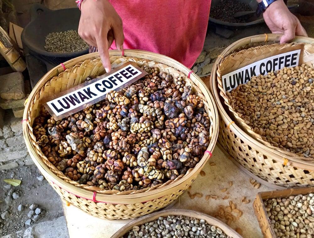 Kopi Lwak, u no de los mejores cafés del mundo