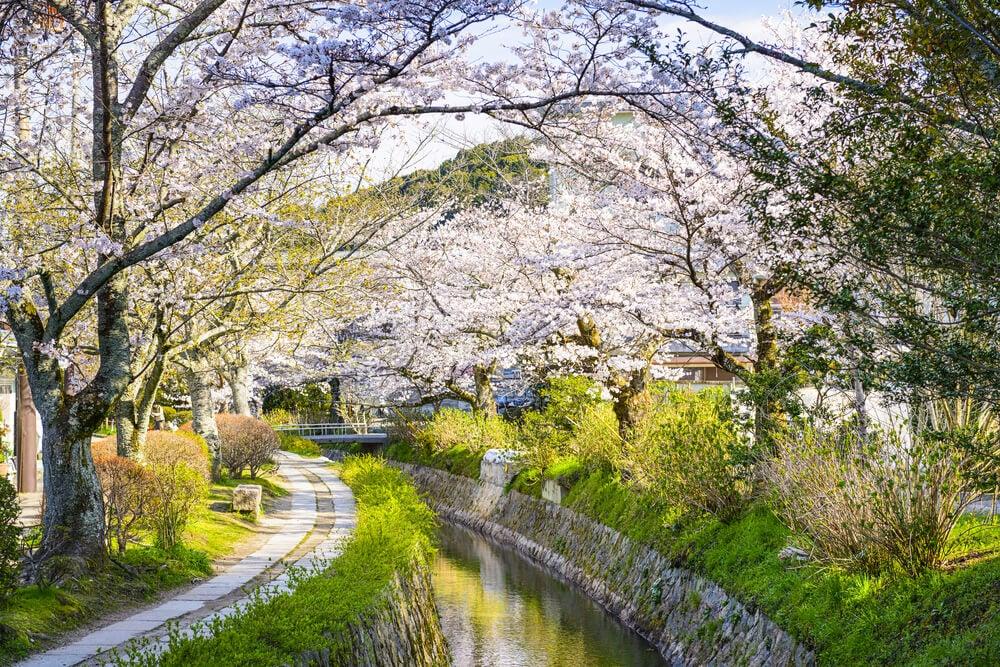 Camino de los Filósofos en Kioto