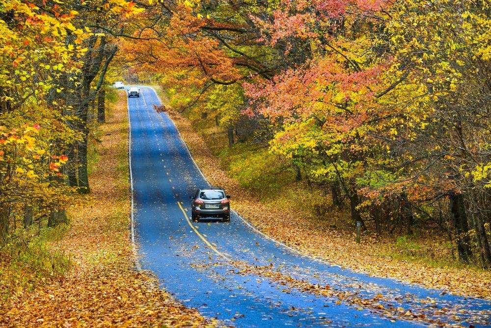 Ruta en coche por una carretera secundaria