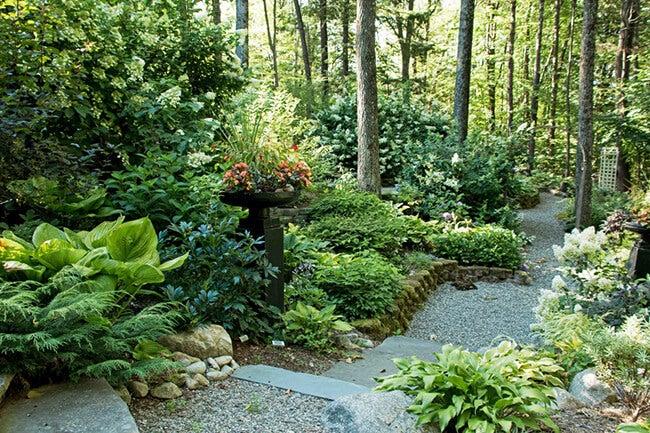 Dalton Garden en Saratoga