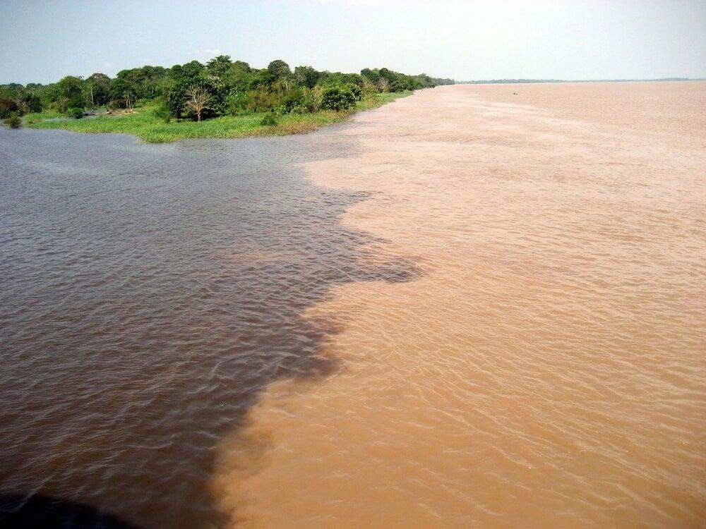 Encuentro de las Aguas en la Amazonía
