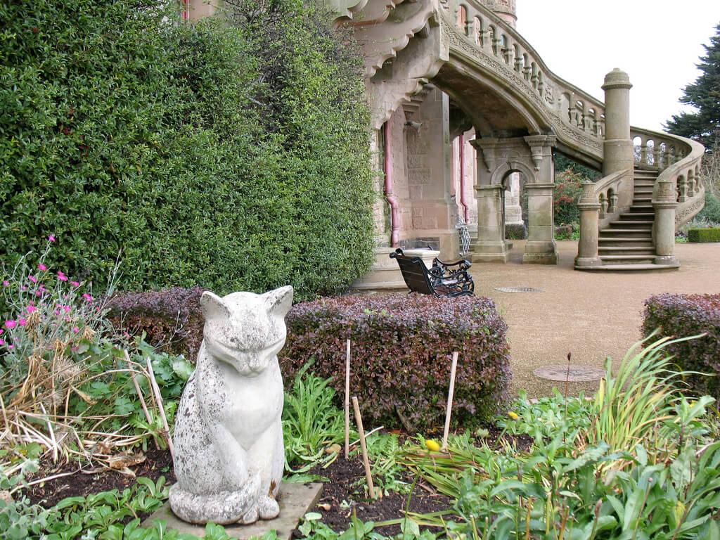 Gato en el jardín del castillo de Belfast
