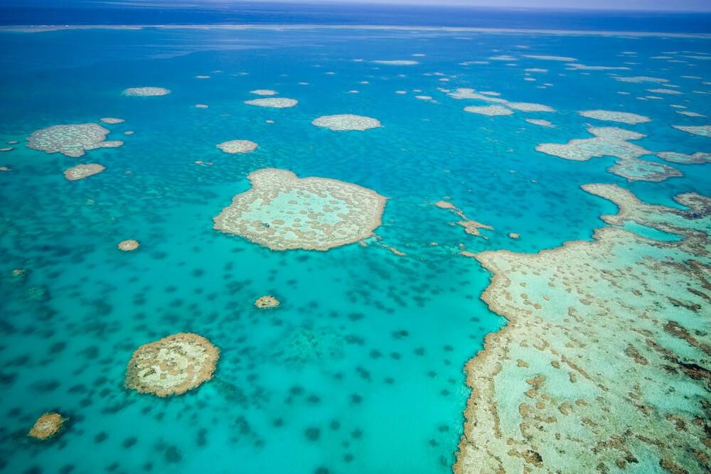 Actividades en la Gran Barrera de Coral en Australia