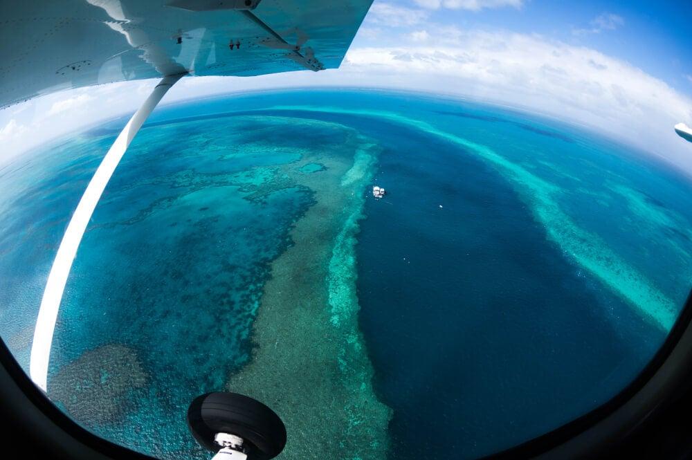 Barrera de coral en las islas Whitsunday