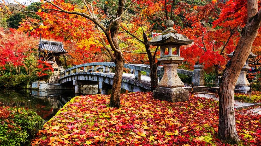 Parque de Kioto en otoño