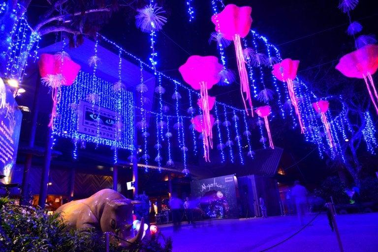 Night Safari, el safari nocturno de Singapur