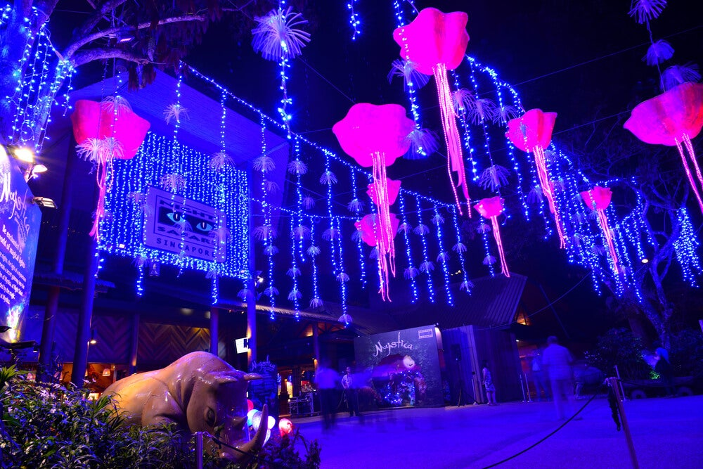 Night Safari, el safari nocturno de Singapur
