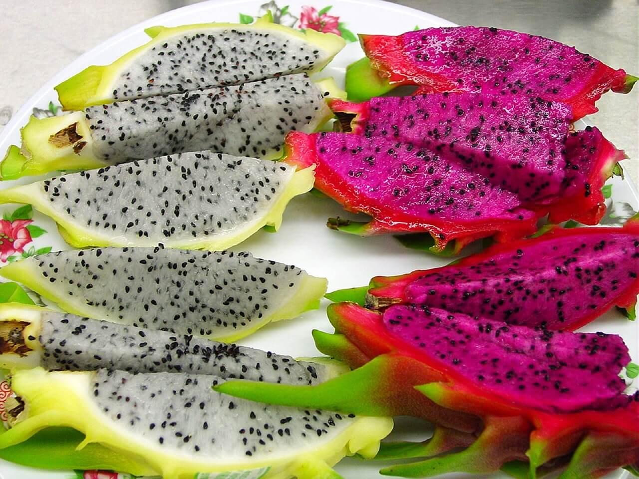 Pitahaya, una de las frutas más exóticas de México