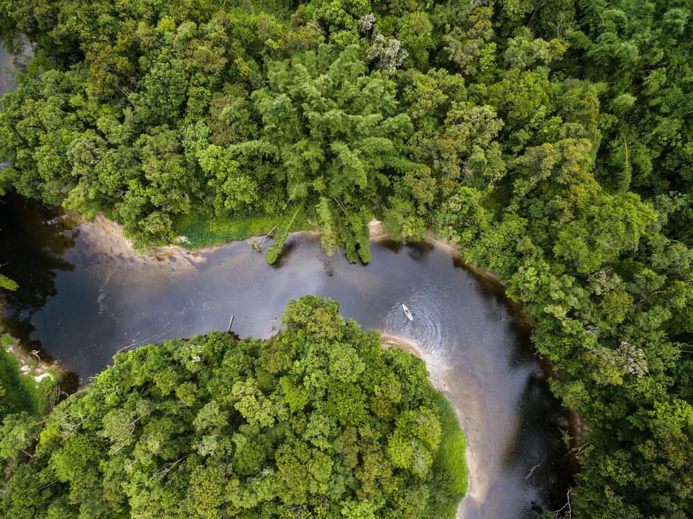Río en la selva amazónica