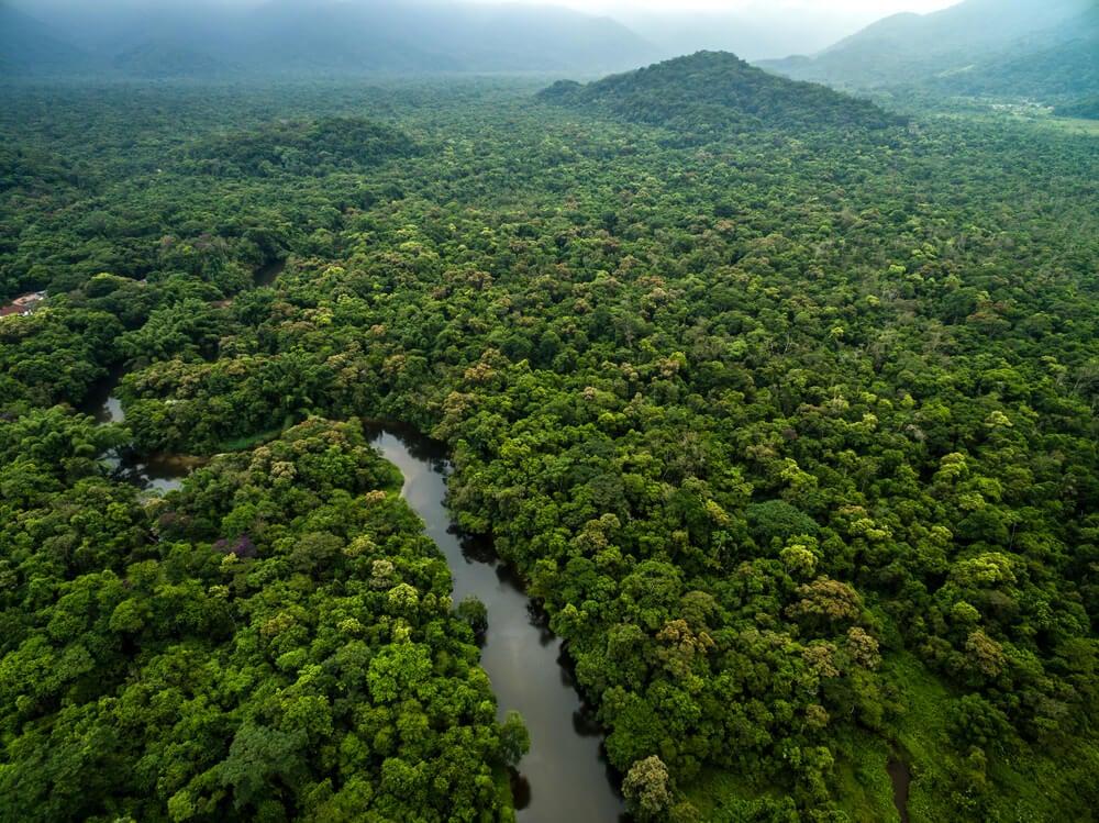 Selva amazónica desde el aire