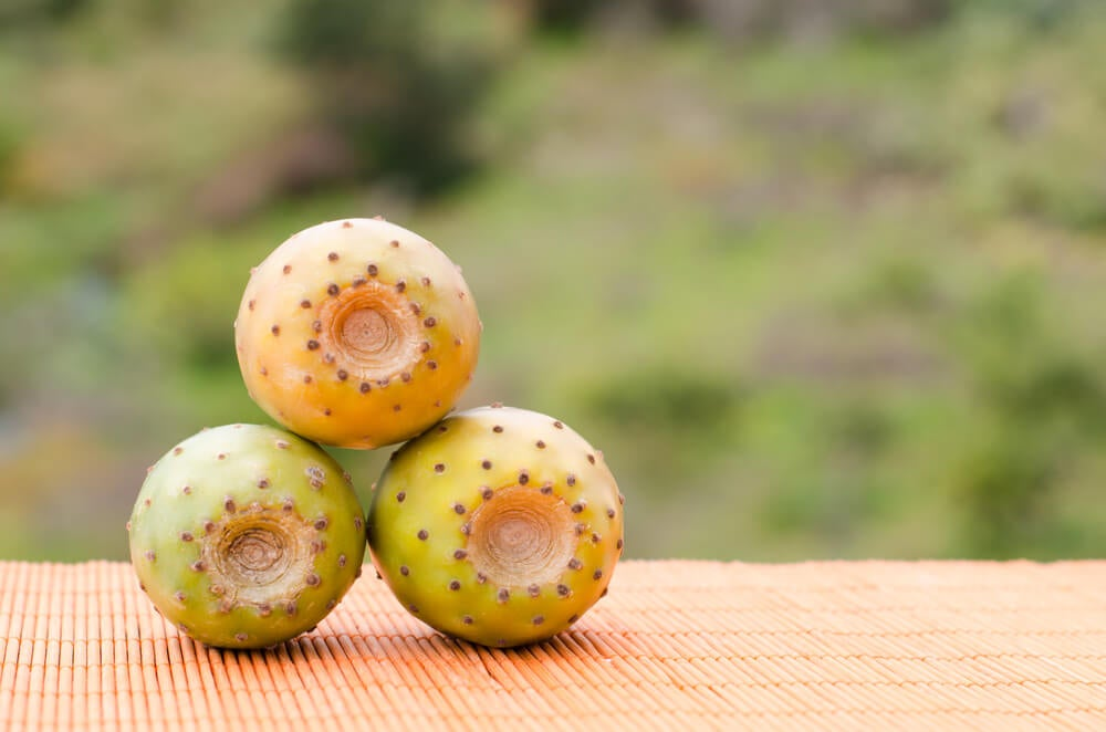 Tuna, una de las frutas más exóticas de México