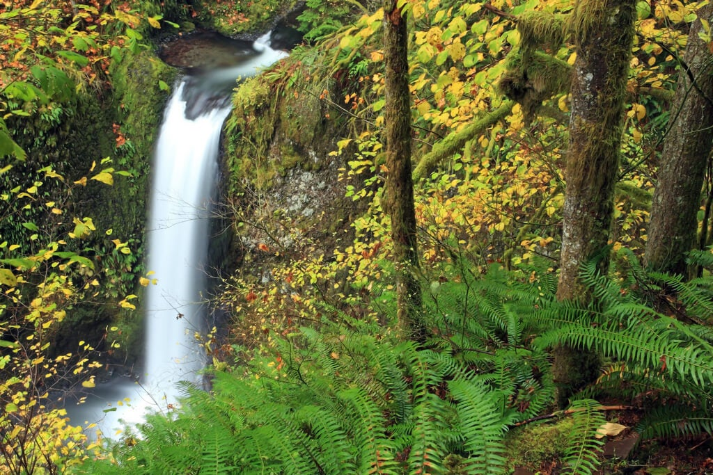 Caída de las cataratas Multnomah