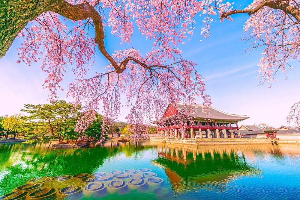 Palacio de Gyeongbokgung en Seúl