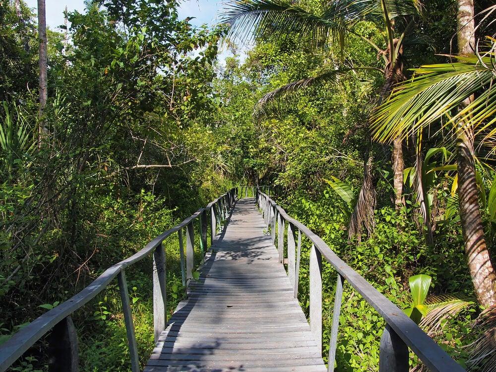 Parque Nacional Cahuita en Puerto Viejo