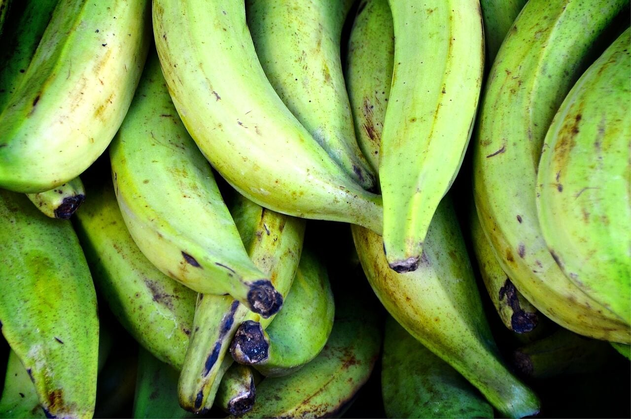 Plátanos para asar