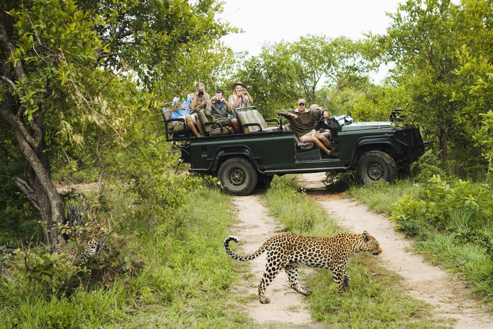 Safari en el Parque Kruger en Sudáfrica