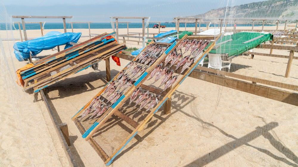 Secadero de pescado en la playa de Nazaré