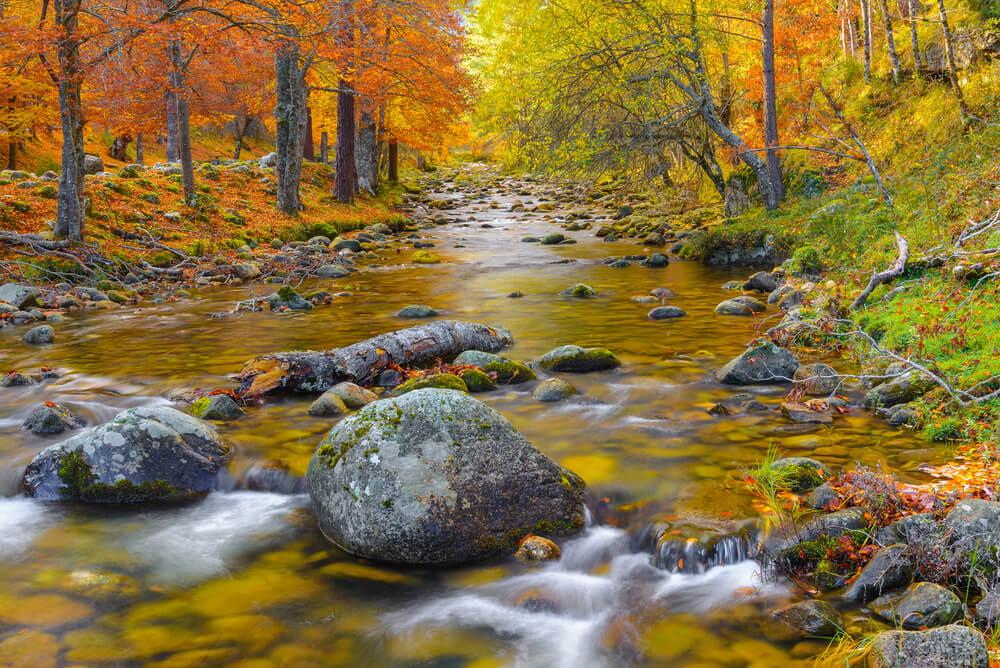 Parque Natural Sierra de Cebollera en otoño