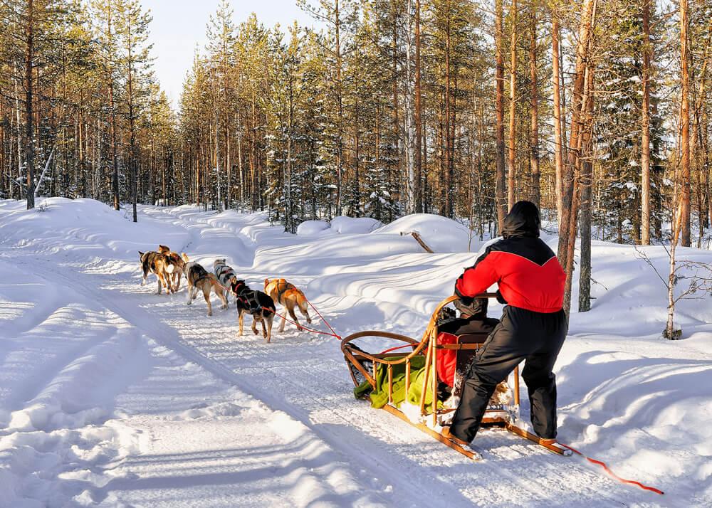 Trineo típico en Laponia noruega