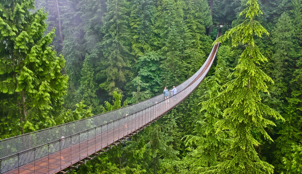 Capilano Suspension Bridge, vive una experiencia de altura