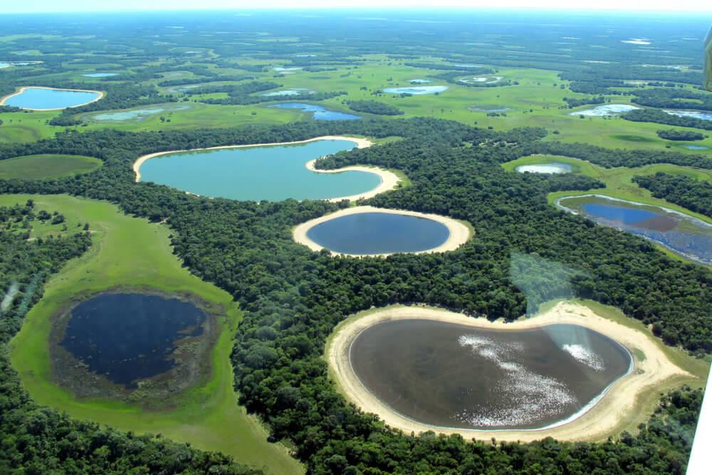 Paisaje de Pantanal, una de las rutas de Sudamérica