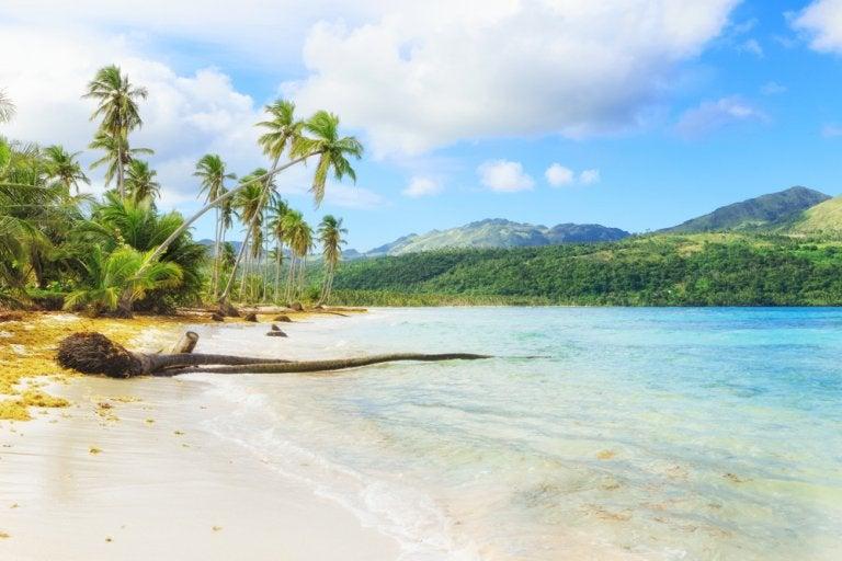 8 razones para viajar a Samaná en República Dominicana