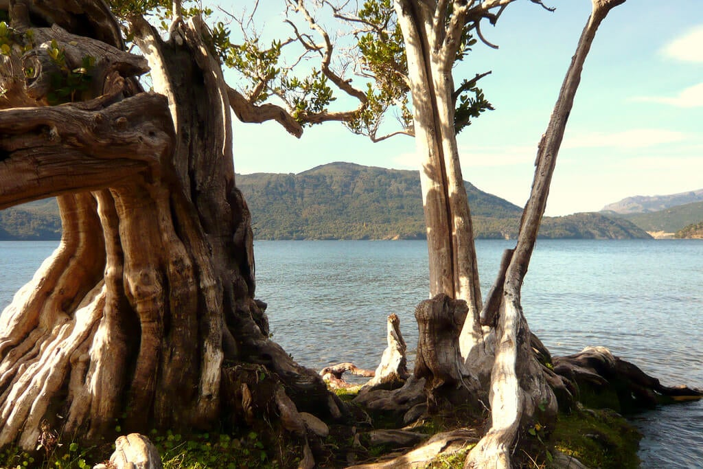 Vista del lago en Quila Quina