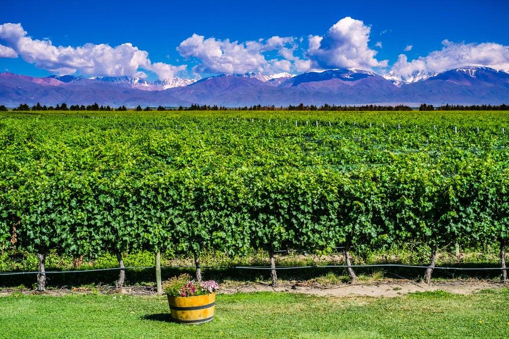 Mendoza en Argentina, un lugar de ensueño