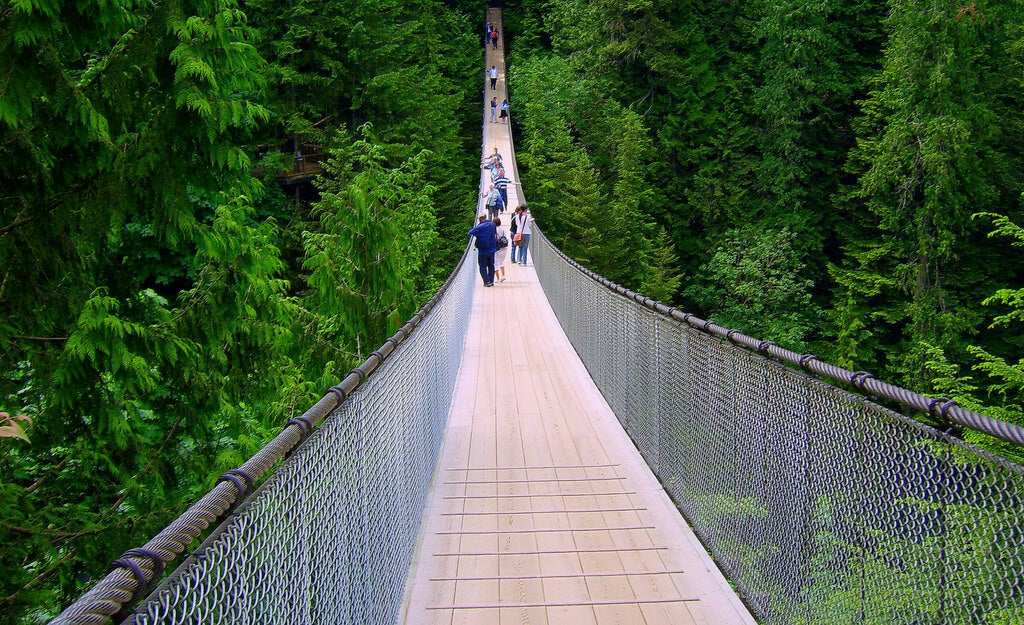 Vista del Capilano suspension Bridge
