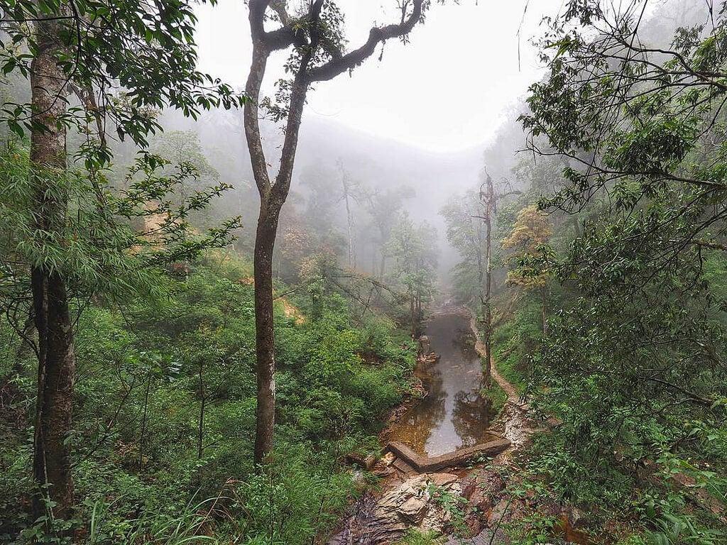 Parque Nacional Hoang Lien