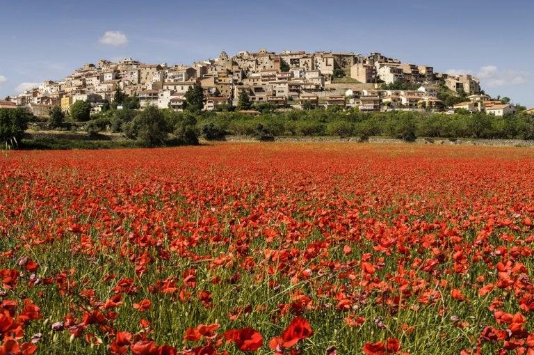 Horta de San Juan, un tesoro en Terres de l'Ebre