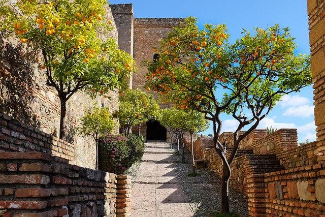 Interior de la alcazaba de Málaga