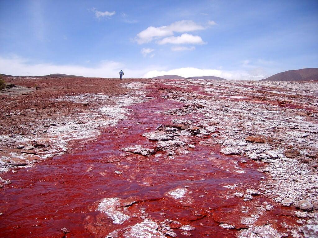 Laguna Roja en el norte de Chile