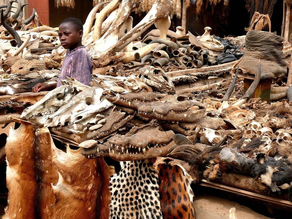 Mercado de fetiches de Lomé