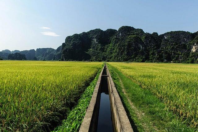 Paisaje en Nih Binh en la campiña vietnamita