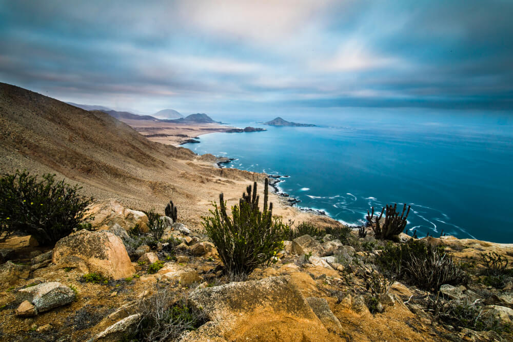 Parque Nacional Pan de Azúcar en el norte de Chile