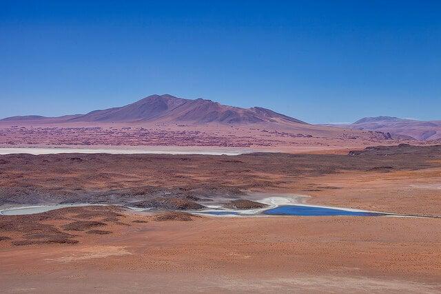 Salar de Tara en el norte de Chile