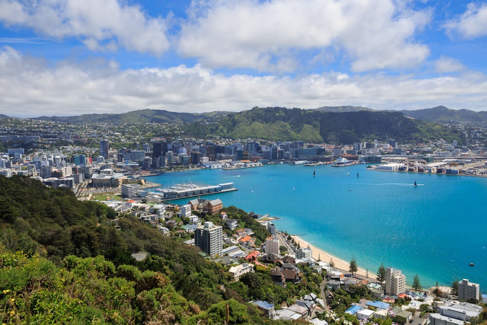 Vista de Wellington