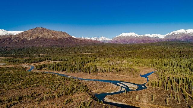 Vista aérea del Parque Nacional Denali