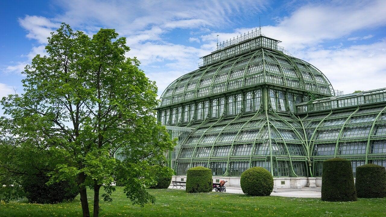Casa de las Palmeras en el palacio de Schonbrunn