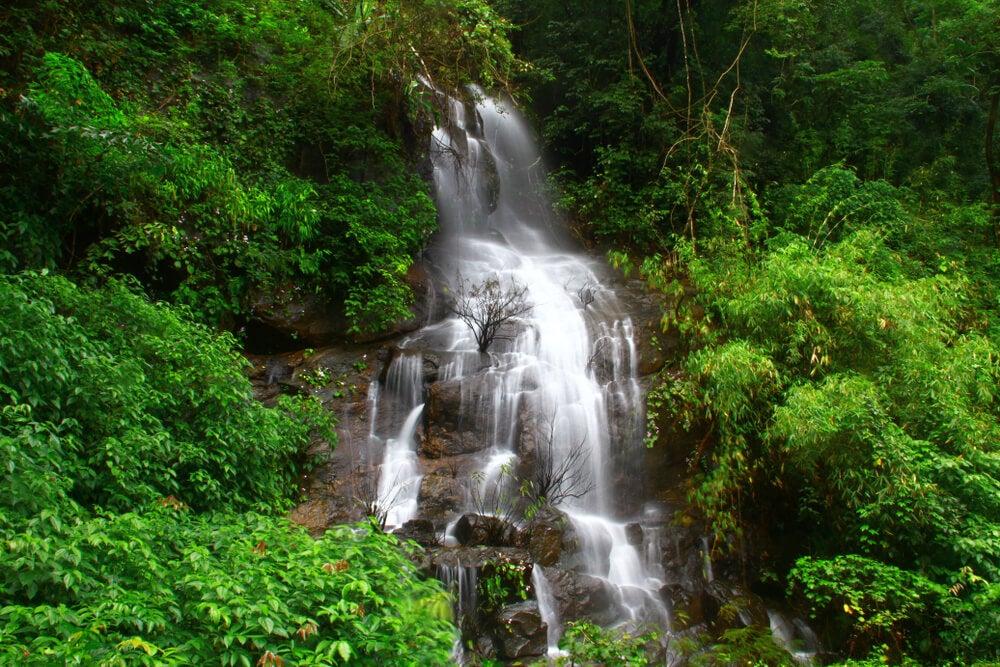 Cascada en Coorg