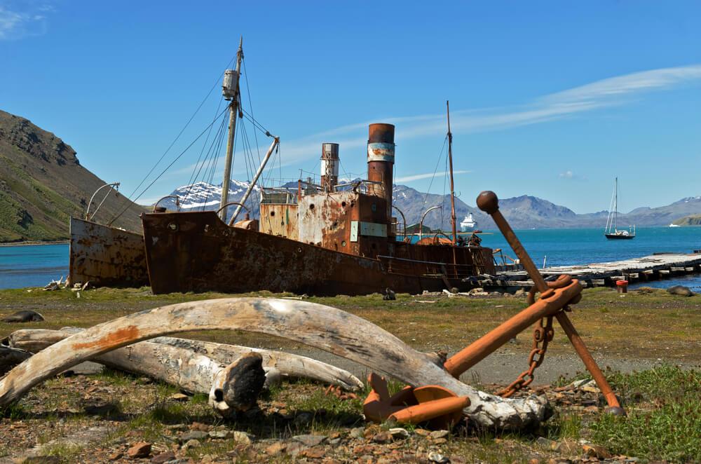 Descubre la estación ballenera abandonada de Grytviken