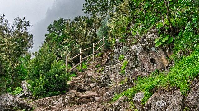 Interior del Parque Nacional de Garajonay
