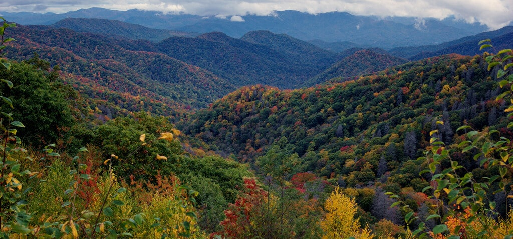 Otoño en Great Smoky Mountains
